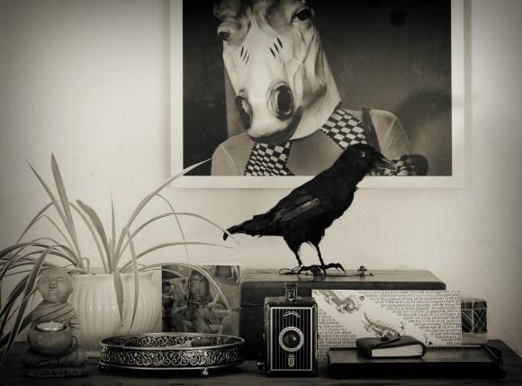 stilleven met paard, kraai en camera